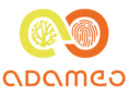 Adameo Sucess Story